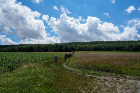 Wandern durch Feld und Flur
